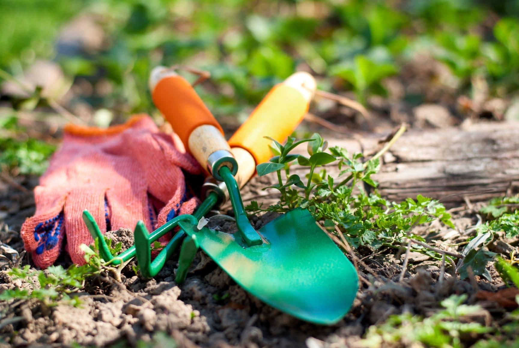 usługi ogrodowe